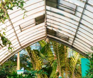 Få drivhus i haven